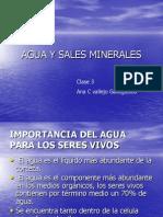 Agua y Sales Minerales