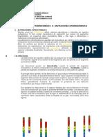 Alteraciones Cromosomicas II