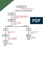Esquema - Procedimento Experimental - separação e identificação de cátions dos Grupos I e II
