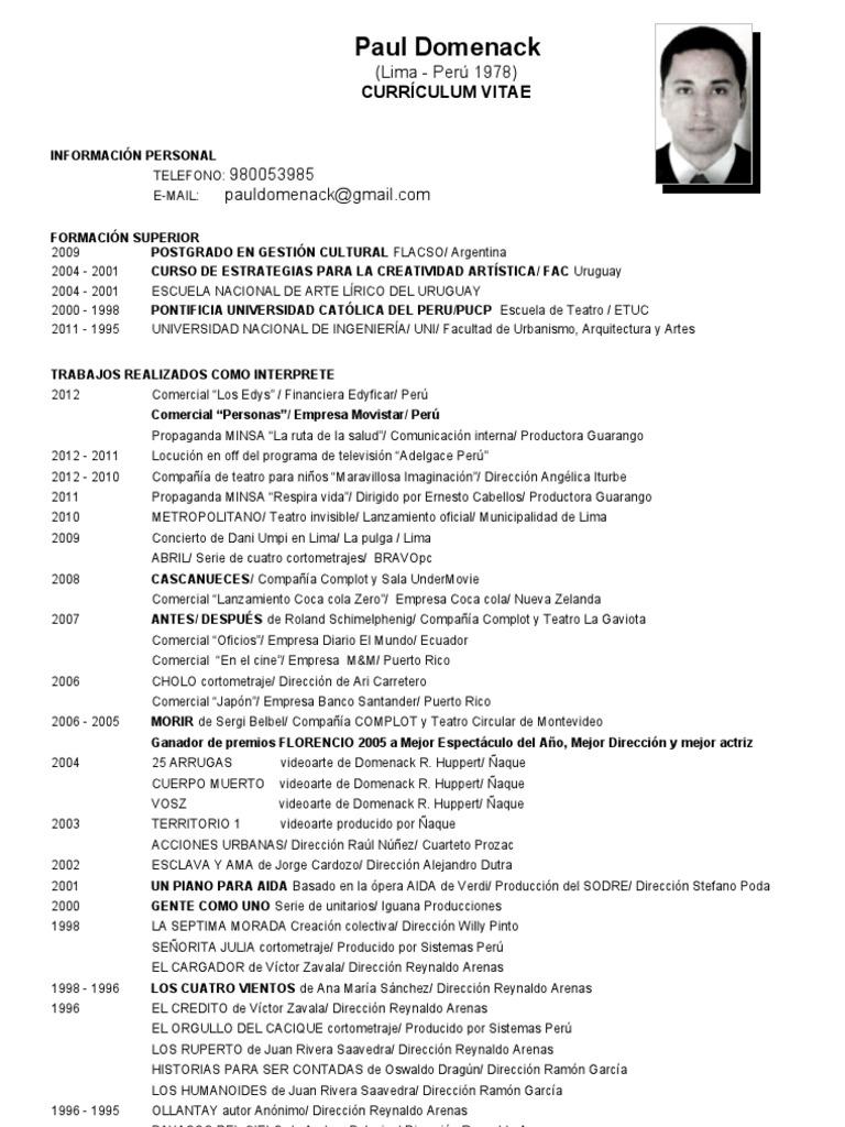 Curriculum Vitae Paul Domenack R Huppert