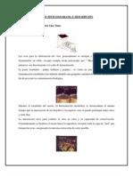 Enologia Vino Tinto Ph Acidez[1]