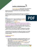 5. Osificacion y Articulaciones 2012