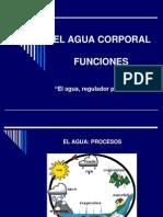 EL AGUA 2012-II