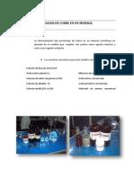 Informe Final de Trabajo de Investigacion
