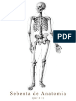 Sebenta de Anatomia - Parte 1