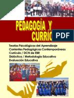 PEDAGOGÍA Y CURRÍCULO (2010). ROQUE VARGAS, Willean