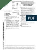 Ceramic Patent