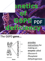 G6PD Genetics Presentation
