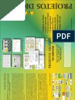 2010 ProjetosDigitais PerformanceManagementServices Print