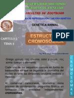 GENÉTICA II 3-2 Los cromosomas