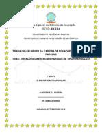 EQUAÇÕES DIFERENCIAIS PARCIAIS DE TIPO HIPERBÓLICO   EVAR J