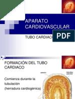 Embriología Aparato Cardiovascular