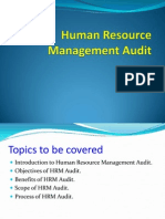 Human Resource Management Audit