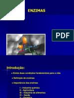 enzimas10