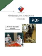 Apartado Educacion Superior Discapacidad ENDISC 2004 13