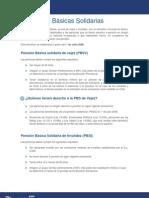 07 Pension Basica Solidaria