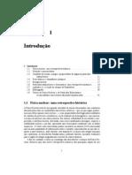 Física Nuclear e Partículas Subnucleares - Capítulo 1 – S. S. Mizrahi & D.  Galetti
