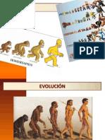 CLASE - EVOLUCIÓN