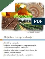Economia Cap1