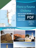 Flora y Fauna Chilena - Joseph