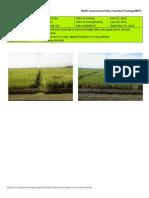 2012WS MET 2-Irrigated - Week 15 (September) Nueva Ecija