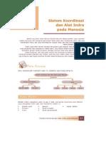 3. Sistem Koordinasi Dan Alat Indra Pada Manusoa