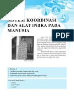 3. Sistem Koordinasi Dan Alat Indra Pada Manusia