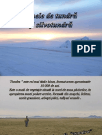 Zonele de Tundra Si Silvotundra-Geografie