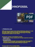 ICHNOFOSIL