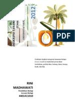 Deskripsi Tanaman Kelapa (Cocos Nucifera)