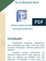 Paginação no word