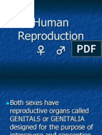 Human Reproduction PPT
