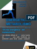 Energética y Metabolismo