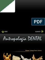 Antropologia Dental