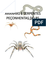 ARANHAS E SERPENTES PEÇONHENTAS DO RS
