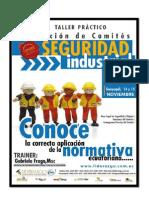 Brief Taller Practico Formacion de Comites