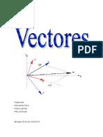 39760333-vectores