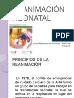 Reanimación neonatal, Equipo 5