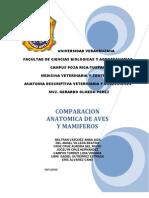 COMPARACIÓN ANATÓMICA DE AVES Y MAMÍFEROS