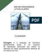 Clonagem Em Organismos Multicelulares