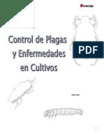 Plagas y Enfermedades en Cultivos - Cuaderno Practico 2012