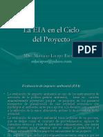 PRESENTACION Ciclo Del Proyecto