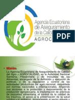 Cultivos de La Sierra