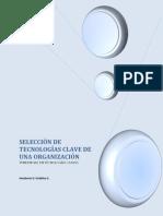 SELECCIÓN DE TECNOLOGÍAS CLAVE DE UNA ORGANIZACIÓN