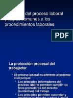 Principios Del Proceso Laboral y Reglas Comunes a Los Procedimientos Laborales