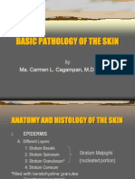 Basic Pathology of the Skin