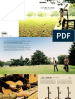 2011 Acoustic