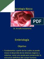 Embriología Básica