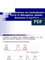 Aula5 Glicogenio Amido Sacarose Lactose