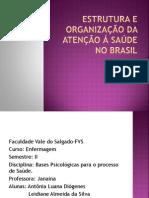 Estrutura e Organização da Atenção á Saúde no Brasil